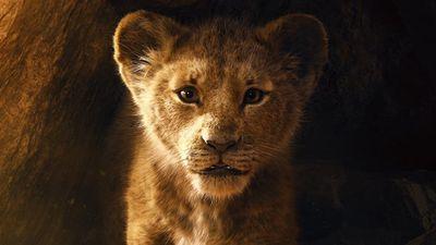 """""""Der König der Löwen"""""""
